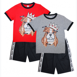 Toddler's King Dog Jersey Top with Athletic Shorts