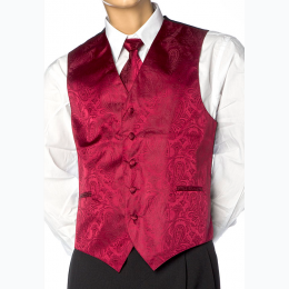 Men's Paisley Design Dress Vest and NeckTie Set