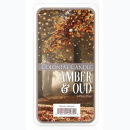 Falling Leaves Collection - Amber Oud 2.75 oz Wax Melts